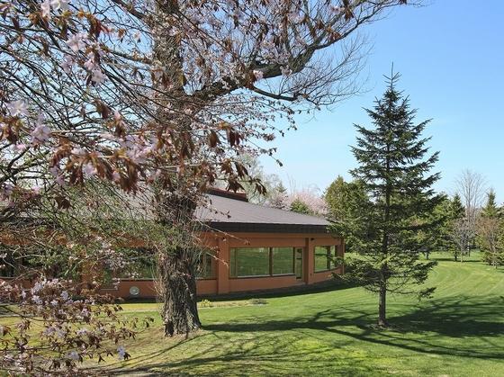 十勝ビュッフェは中庭に面した「レストラン木もれび」にて。