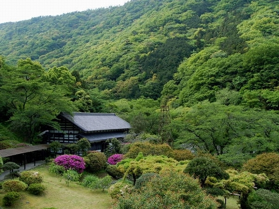 庭園からの風景