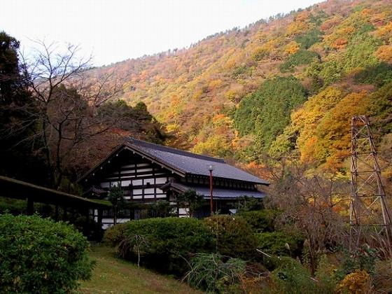 秋には山が色づきます。