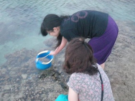 水中スコープ お魚観察できます。