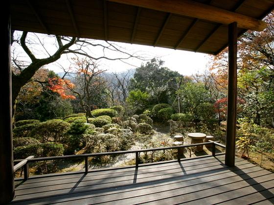 お部屋からは四季折々の庭園が望めます。