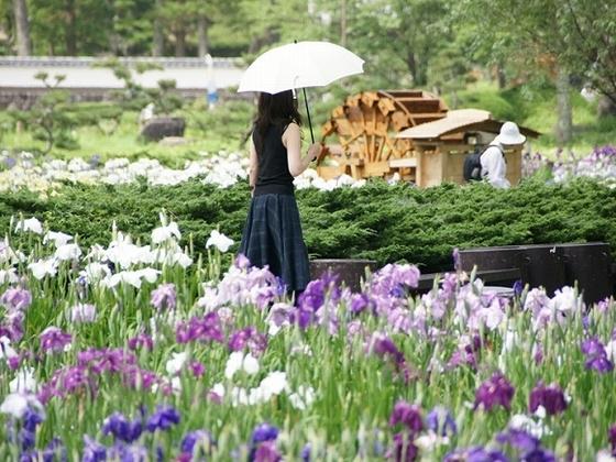 季節の花が楽しめる永沢寺