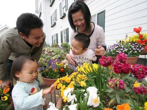 中庭にはお花がいっぱい