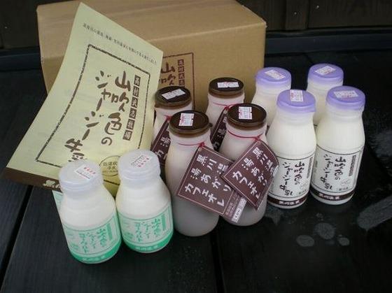 """牛のエサや飼育環境からこだわった""""山吹色のジャージィ牛乳"""""""