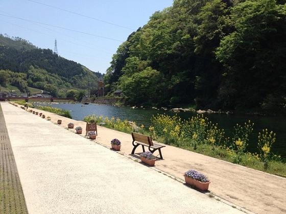 川の周りは整備され、お散歩コースに最適です。