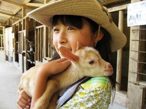 お子様の豊かな心の育成に、自然と動物とのふれ合いを楽しめます