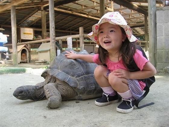 渋川動物公園では、いろんな動物とふれ合いが出来ます
