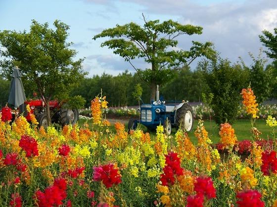四季がはっきりしているので春夏秋冬違う景色が楽しめます。