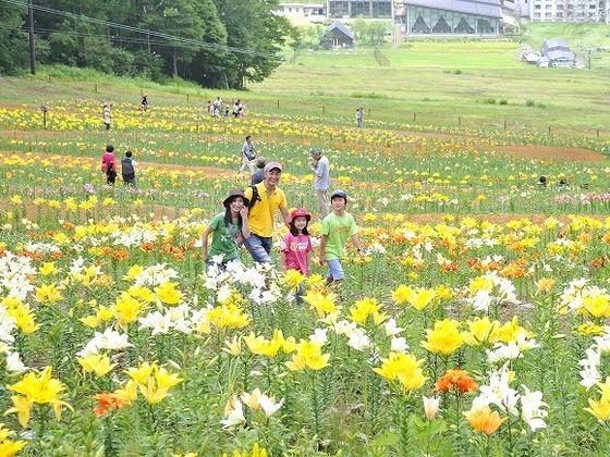 夏は色とりどりの花が高原を包む「ゆり&ラベンダー園」が開園。