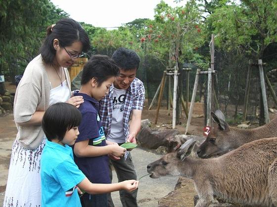 動物とふれあえる伊豆シャボテン公園(当館となり)