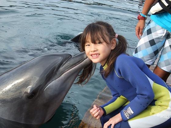 当館限定プログラムのイルカ触れ合い体験(2歳から)