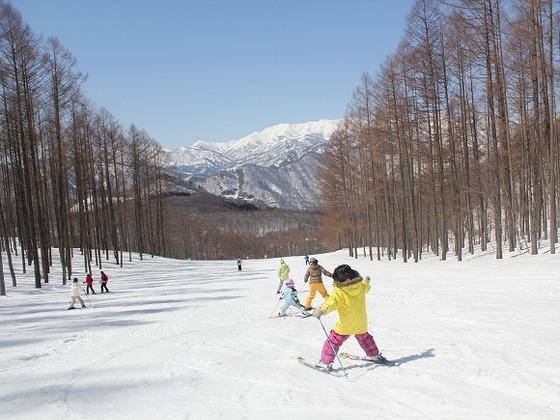 ホテル併設「水上高原スキーリゾート」ちびっこも安心のコース設計