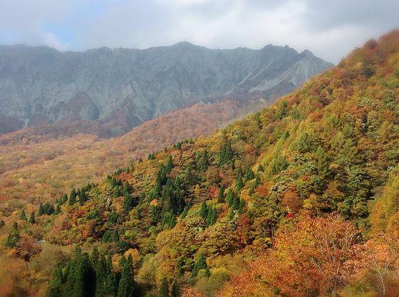蒜山~大山パークウェイの紅葉を見ながらのドライブは最高です(冬季通行止め)