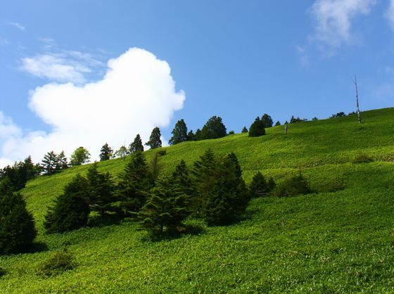 きれいな空気とたくさんの緑のなかで深呼吸してみてください