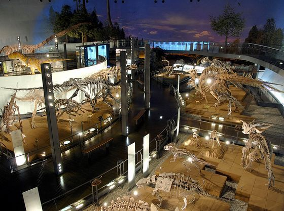世界5大恐竜博物館の一つ「福井恐竜博物館」車45分