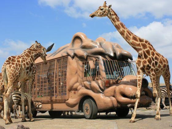 九州自然動物公園 アフリカンサファリ (車で約40分)