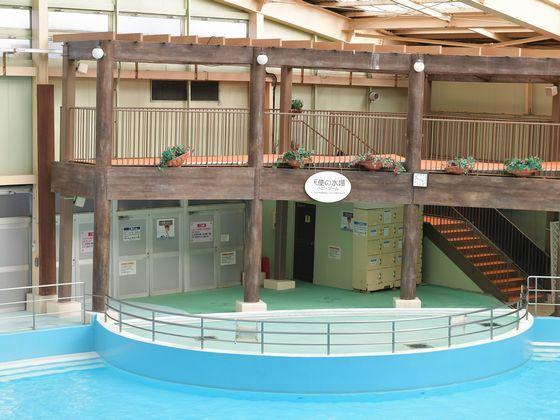 水遊びオムツで利用できる「天使の水場」でプールデビューを!