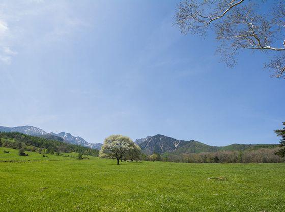 広い牧草地からの八ヶ岳のパノラマ