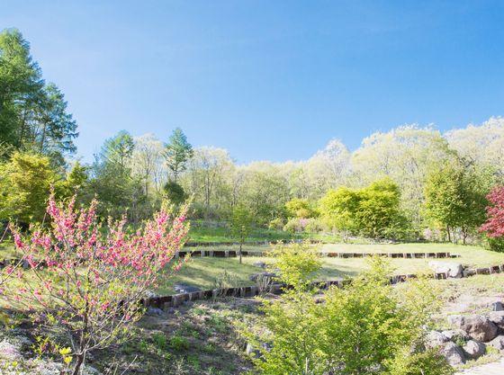 【見晴らしの丘】フロント棟より徒歩約10分。四季折々のお花や野鳥の姿をご覧頂けます。