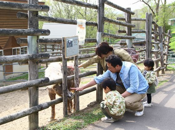 ホテルから車で約10分 旭ヶ丘公園には入園無料のミニ動物園があります