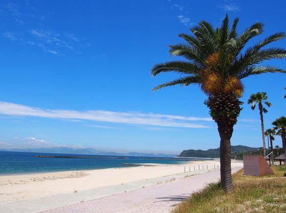 夏は海水浴も!淡路島にはAA評価の綺麗な海がいっぱい!