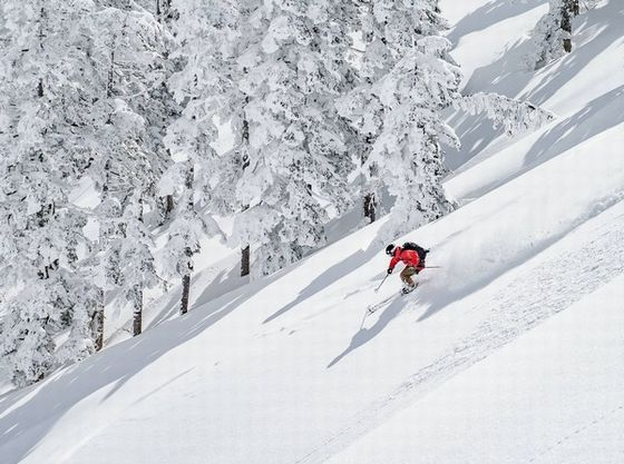 冬季は周辺スキー場へ無料送迎