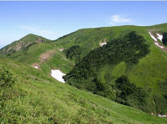 春は周辺の山々の新緑が楽しめ、山菜が美味しい季節です
