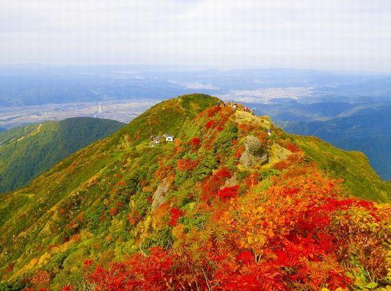 味覚の秋は新米とあたり一面紅葉に彩られます。