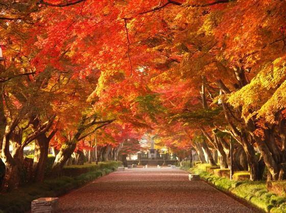 紅葉時期が一番美しい塩原温泉