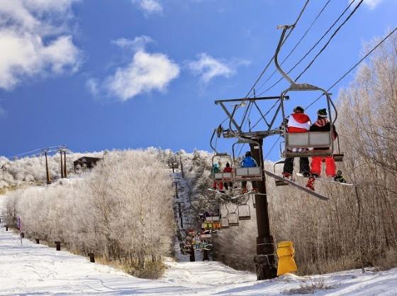 ハンターマウンテンは冬はスキー、夏はゆり、秋は紅葉と一年中楽しむことが出来ます。
