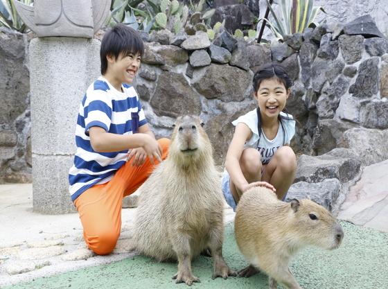 伊豆シャボテン動物公園  ~ ホテルから車で約10分