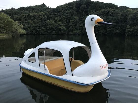 亀山湖でスワンボードを浮かべて愉しんではいかがでしょう。
