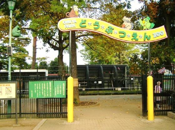 入場無料の大宮公園動物園