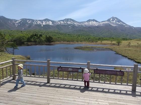 知床五湖の高架木道はお子様連れでも安心です