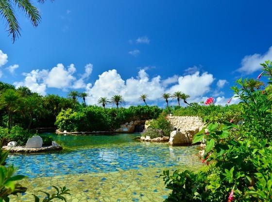温泉を使ったジャングルプールは年中利用可