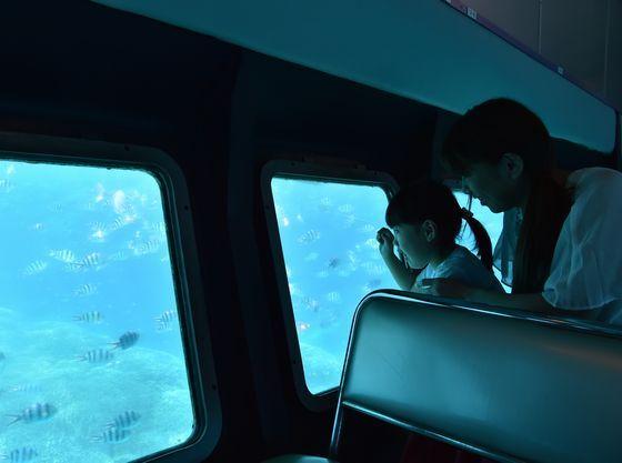 半潜水式水中観光船で海中のお散歩も楽しめます
