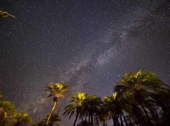 夜は美しい満点の星空がお楽しみいただけます