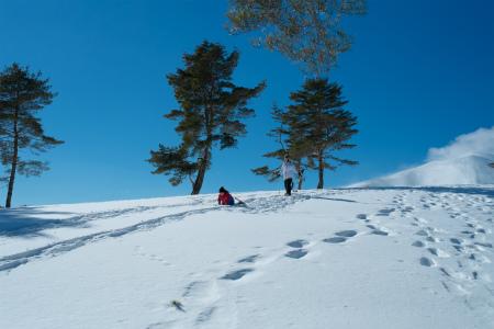 子どもと雪遊び&スキー!冬旅が楽しめるスポット【関東編】