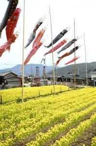 太陽が降りそそぐ瀬戸内海「小豆島」で子どもと一緒に春を満喫