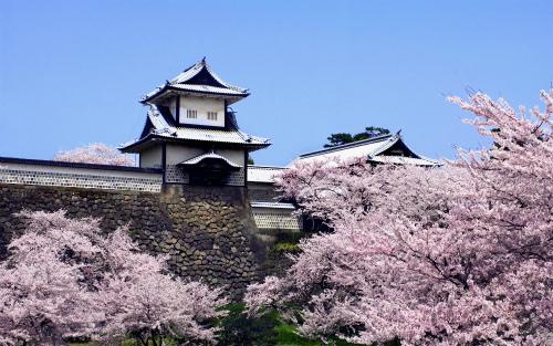 春の旅育~北陸新幹線で子どもと一緒に。花いっぱいの金沢・砺波・飯山