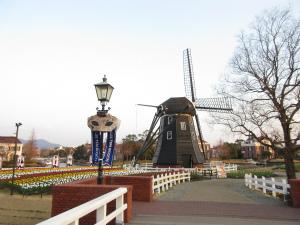 花のテーマパーク「長崎ハウステンボス」、無料で楽しむ「青島亜熱帯植物園」