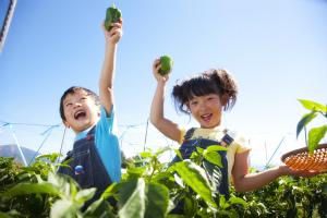 成功の鍵は「子どもが楽しんでいる間に、親はちょっとリラックス」