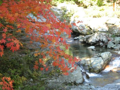 2015年紅葉は?子連れで楽しい秋のお楽しみスポット【北海道・東北】