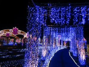 世界一のスケールをゆっくり楽しめる!「ハウステンボス~花と光の王国」(長崎県)